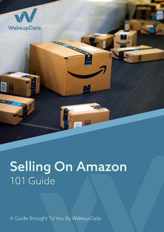 Amazon 101 - ebook cover