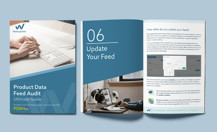 Product Feed Audit Guide (ebook)